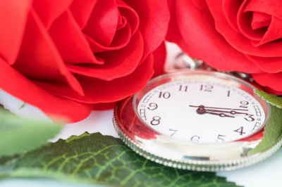 regalar flores, flores de regalo, flores, centros de flores de regalo para el hospital, enviar centros de flores urgentes, flores a domicilio, cesta de flores y peluche a domicilio, flores económicas