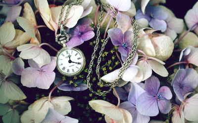 Ramo Flores Irlanda, Entregas de Flores a Domicilio, Flores para Regalar, Floristería Online, Arreglos Florales, Envíos Florales Urgentes